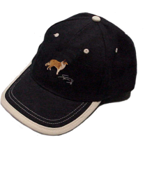 full_gorra_azul_pastor_escoces