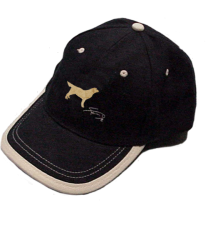 gorra-azul-bordado-golden-retrevier